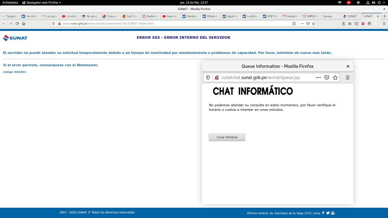 Error 503 en el chat de la SUNAT (error interno de servidor)